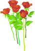 矢量玫瑰花_8