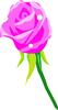 矢量玫瑰花_22