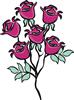 矢量玫瑰花_34