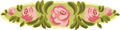 矢量玫瑰花_47