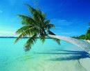 沙滩海滩_48