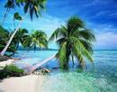 沙滩海滩_49
