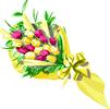 矢量现代花卉_197
