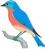 矢量鸟类_7