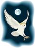 矢量鸟类_65