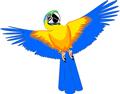 矢量鸟类_82