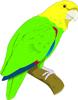矢量鸟类_83