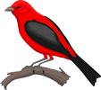 矢量鸟类_93