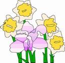 花朵鲜花_42