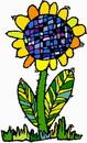 花朵鲜花_47