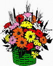 花朵鲜花_53