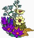 花朵鲜花_57