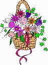 花朵鲜花_223