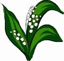 花朵鲜花_272