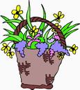 花朵鲜花_274