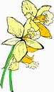花朵鲜花_275