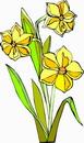 花朵鲜花_309