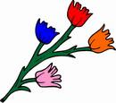 花朵鲜花_328