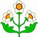 花朵鲜花_340