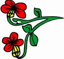 花朵鲜花_360