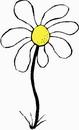 花朵鲜花_364
