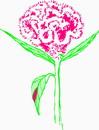 花朵鲜花_381