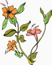 花朵鲜花_384