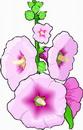 花朵鲜花_391