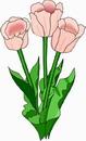 花朵鲜花_392