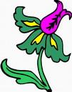 花朵鲜花_394