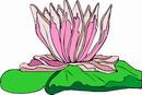 花朵鲜花_398