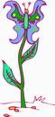 Flowers flowers _620