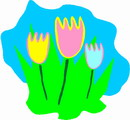 Flowers flowers _650