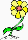 花朵鲜花_739