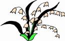 花朵鲜花_743