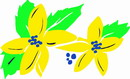 花朵鲜花_749