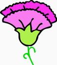花朵鲜花_910