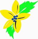 花朵鲜花_911
