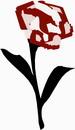 花朵鲜花_912