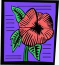 花朵鲜花_1011