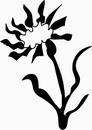 花朵鲜花_1118