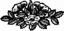 花朵鲜花_1122