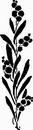 花朵鲜花_1181