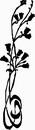 花朵鲜花_1190