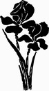 花朵鲜花_1192