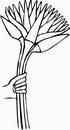 花朵鲜花_1195