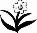 花朵鲜花_1199