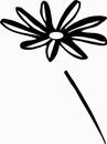 花朵鲜花_1206