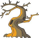 传统树木_114