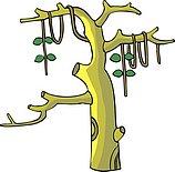 传统树木_118